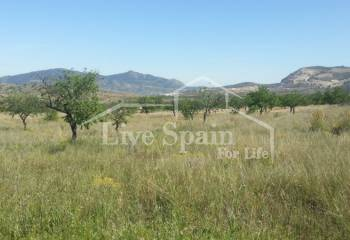 Plot of Land - Weiterverkauf - Hondon De Las Nieves - Hondon De Las Nieves