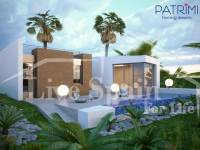 New build - Villa (detached) - Algorfa