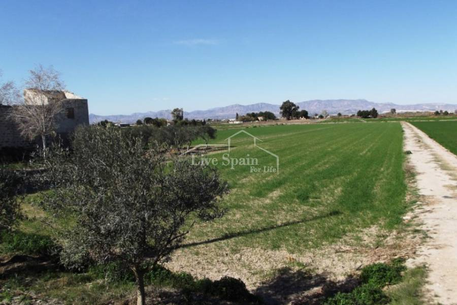 Reventa - Plot of Land - Dolores