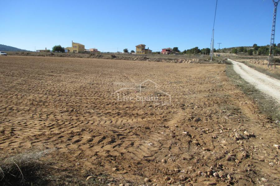 Nouvelle construction - Plot of Land - Pinoso